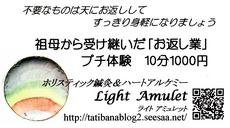 2012.01.07.lightamulet01.jpg