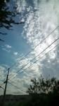 20111017143859001.jpg