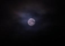2012.07.04.0101RIMG6046.jpg