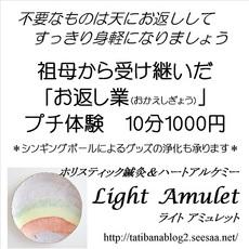 2014.10.10.プチ癒しフェスタ広告原稿50.jpg
